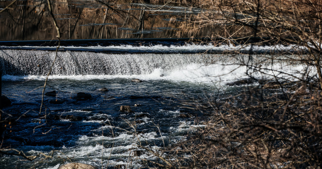 In Delaware, Dams Are Being Removed to Spur Fish Migration