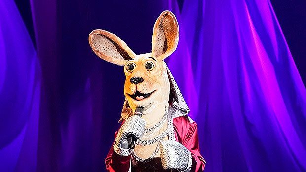 'The Masked Singer': The Top Clues About The Identity Of The Kangaroo