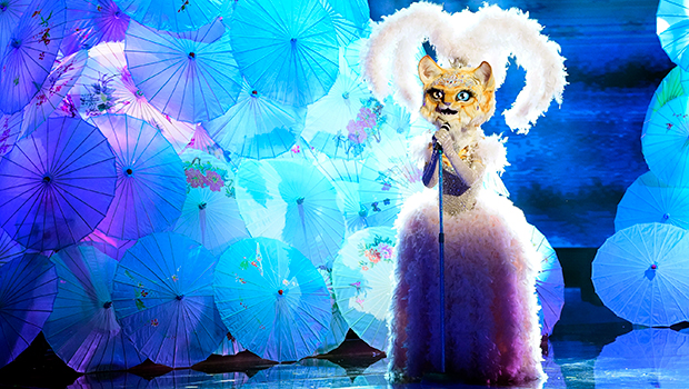 'The Masked Singer': All The Major Clues & Hints About The Identity Of The Kitty