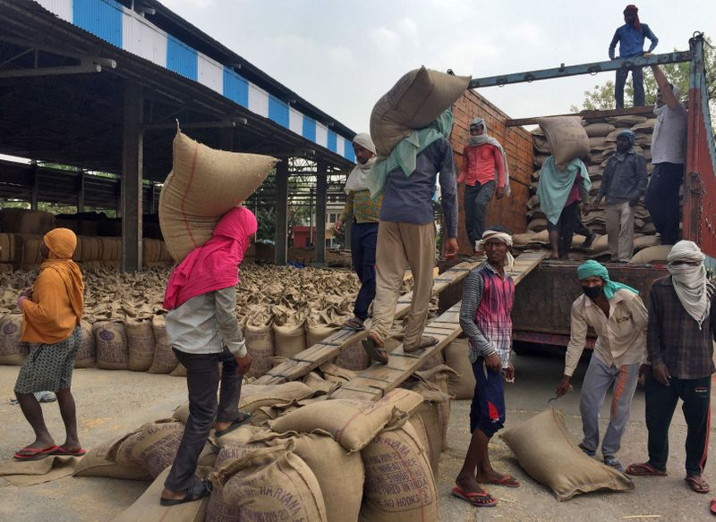 India's farmers gather record wheat crop, but cannot move it
