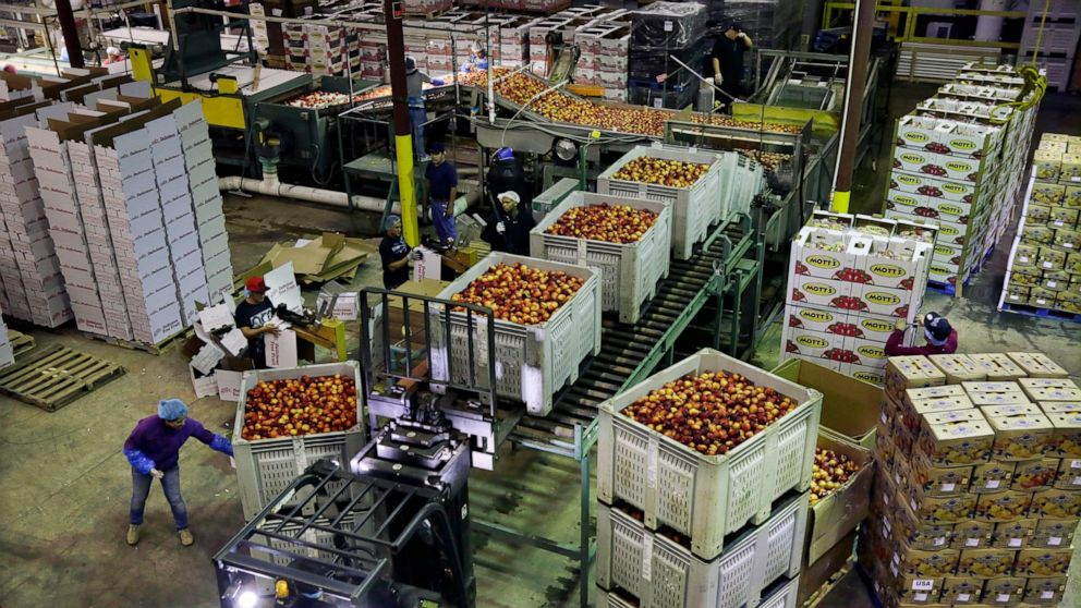 US wholesale prices rise 0.4% in May led by food and energy