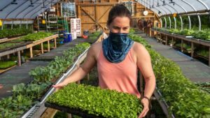 Farm-to-table dining takes on new meaning amid pandemic