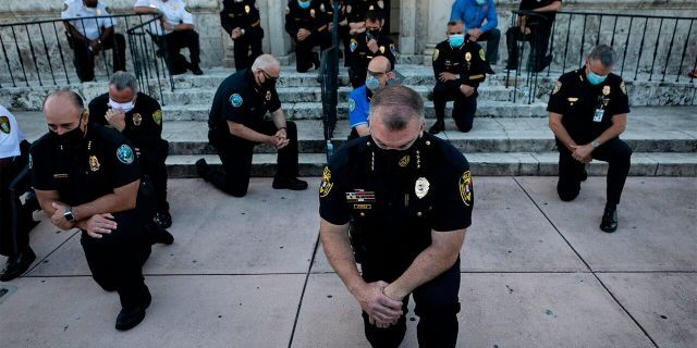 Capitol Police officers take a knee to cheers of protesters
