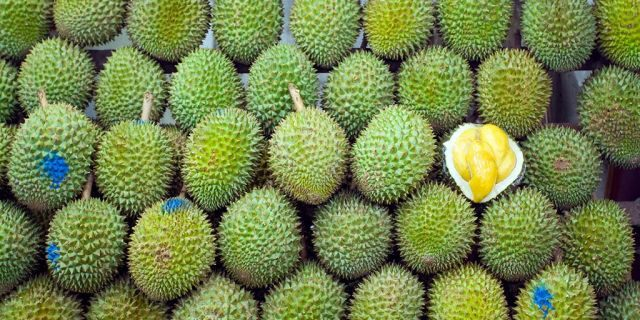 Durian odor forces German post office to evacuate, report says