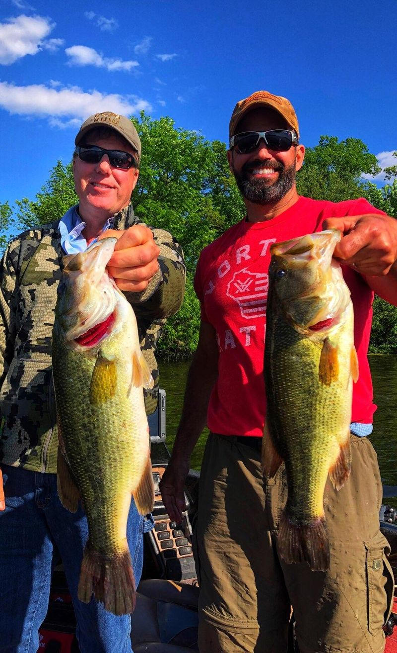Saturday's Fox Lake guide Trip netted 65 fish. A mix of bass, pike and walleye. Photo provided by Mike Norris