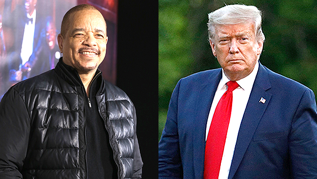 Ice-T Trolls Trump After President Tweets About 'Law & Order' In The Middle Of America's Unrest: See Tweet