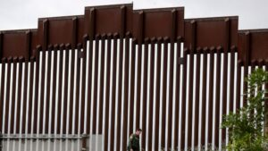 Border authorities use pandemic powers to expel immigrants
