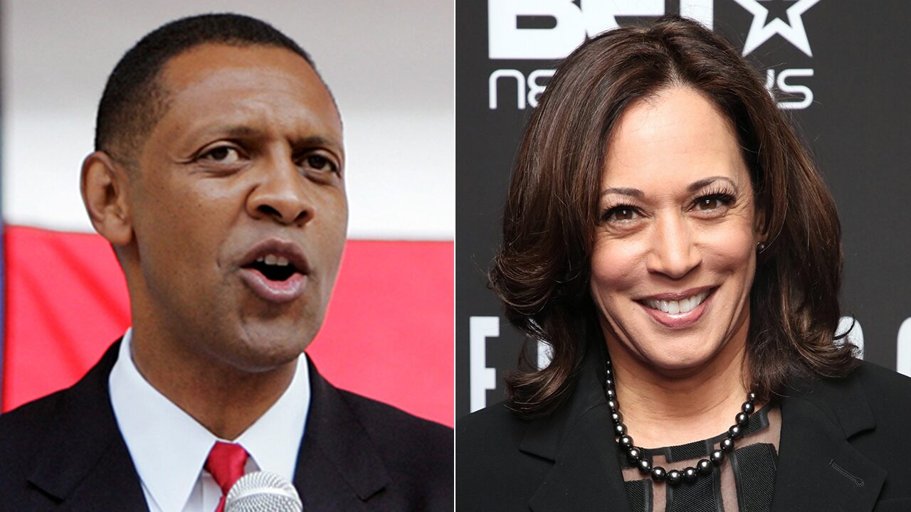 Pro-Trump Georgia Democrat: Kamala Harris is 'the wrong person' to win over Black voters