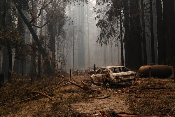 'It's Hard to See Your Memories Burn': Loss From Wildfires Grows in California