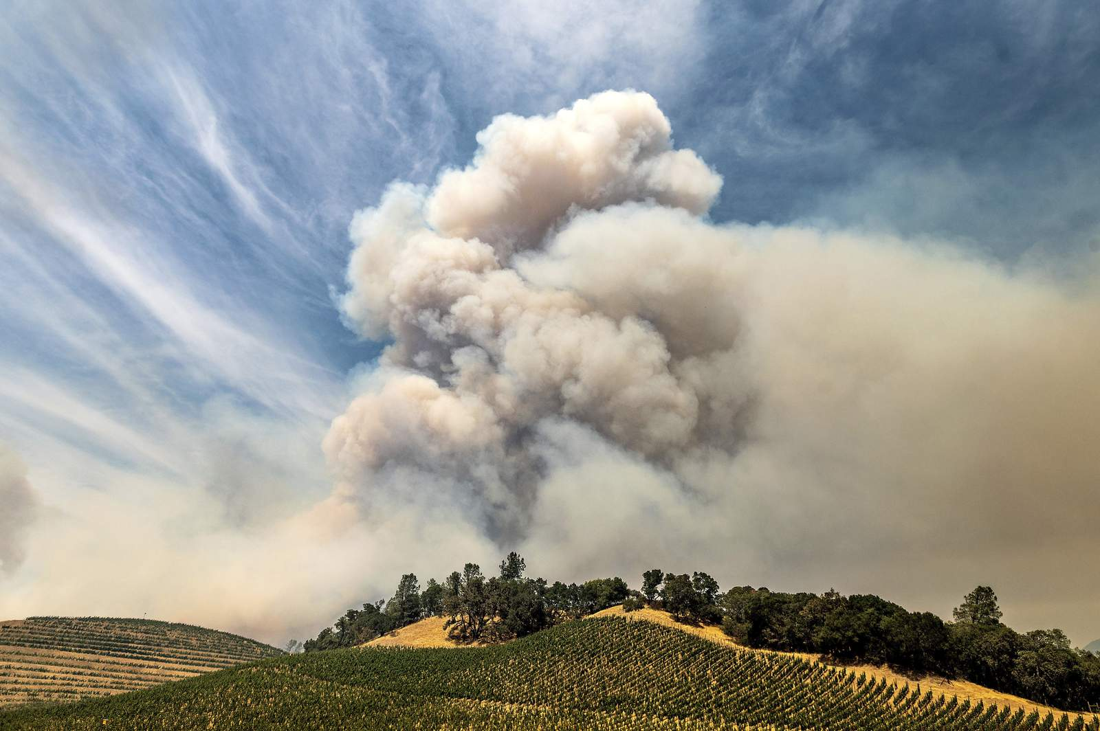 Wildfires again threaten business in California wine country