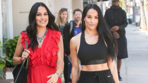 Brie Bella Posts First Selfie With Her Sister Nikki Two Weeks After They Give Birth — See Pic