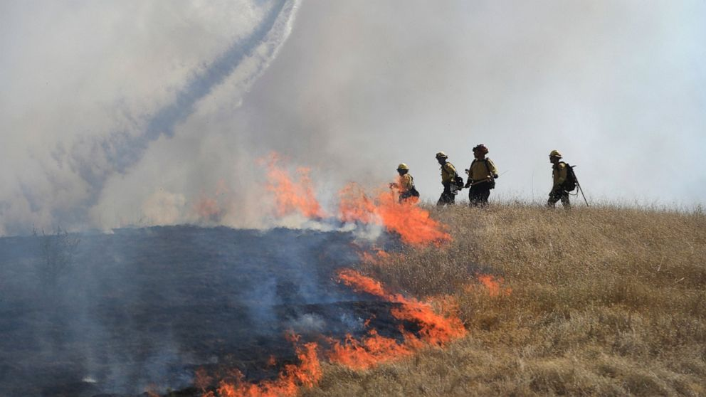 Many marijuana-growers refuse to abandon crops as area threatened by Calif. wildfire