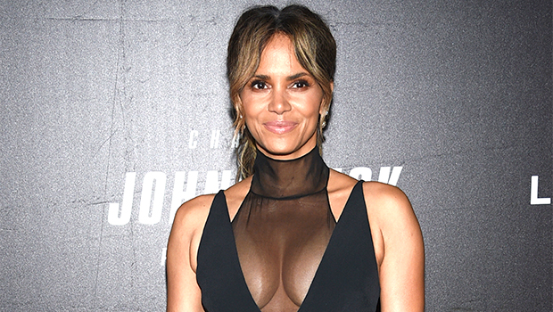 Halle Berry & Rumored BF Van Hunt Rock Matching Face Masks: 'You've Got To Coordinate'
