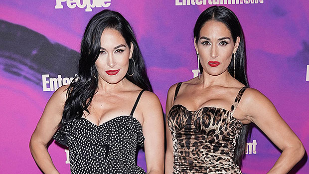 Nikki & Brie Bella Cradle & Show Off Their Newborn Sons In Cute New Pics 6 Weeks After Births