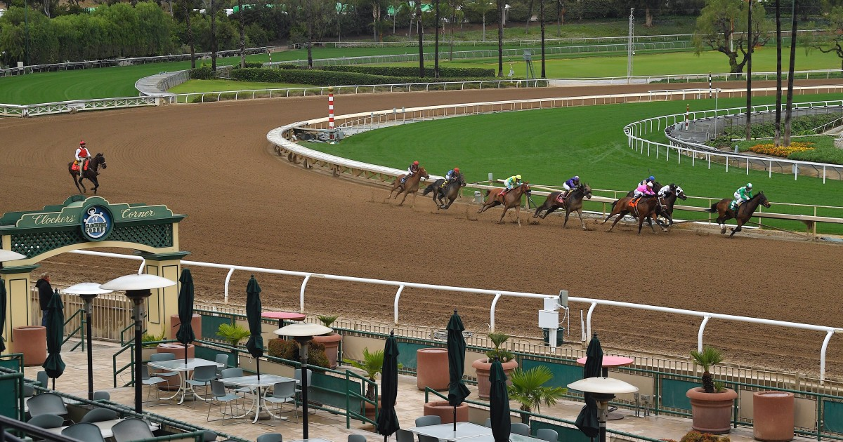 U.S. House passes horse racing safety bill
