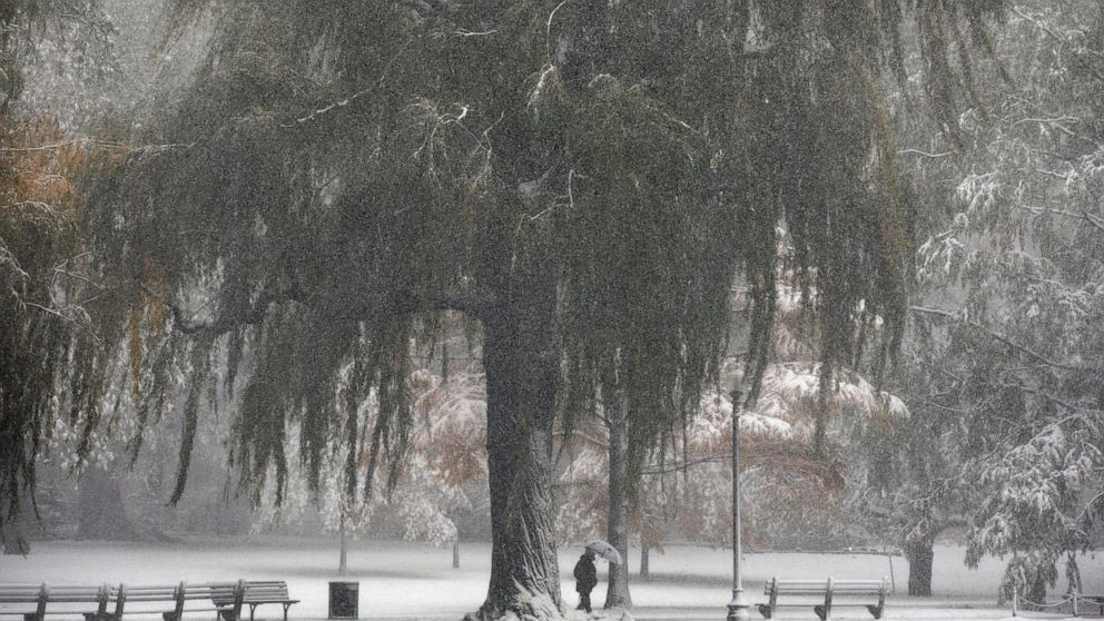 Octobrrrr? Early snowfall blankets much of northeast US