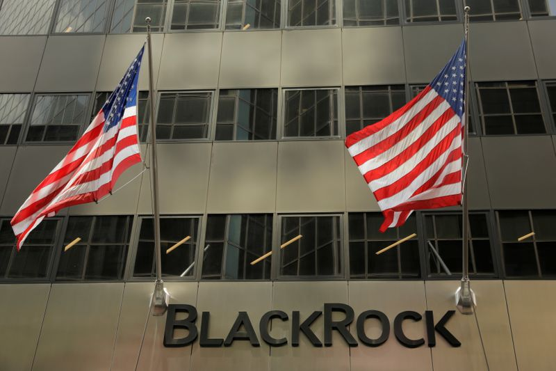 BlackRock's Fink 'pretty bearish' on emerging markets