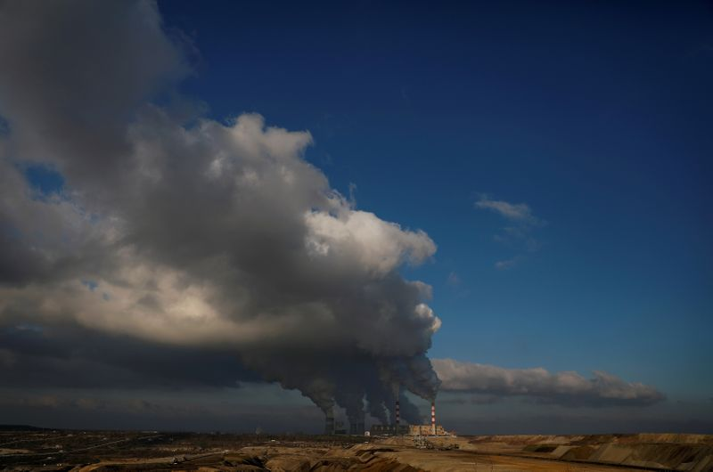 Too few companies disclose financial hit from climate change, regulator says