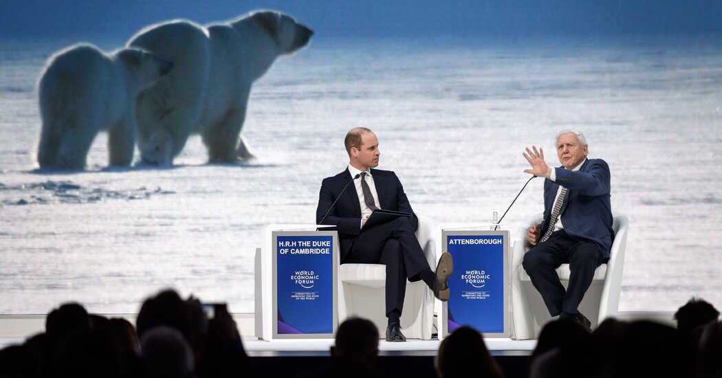 Prince William Announces New Prize Aimed at 'Repairing' the Planet
