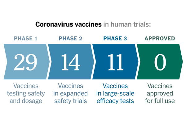 Coronavirus Vaccine Makers Are Not Mass-Slaughtering Sharks