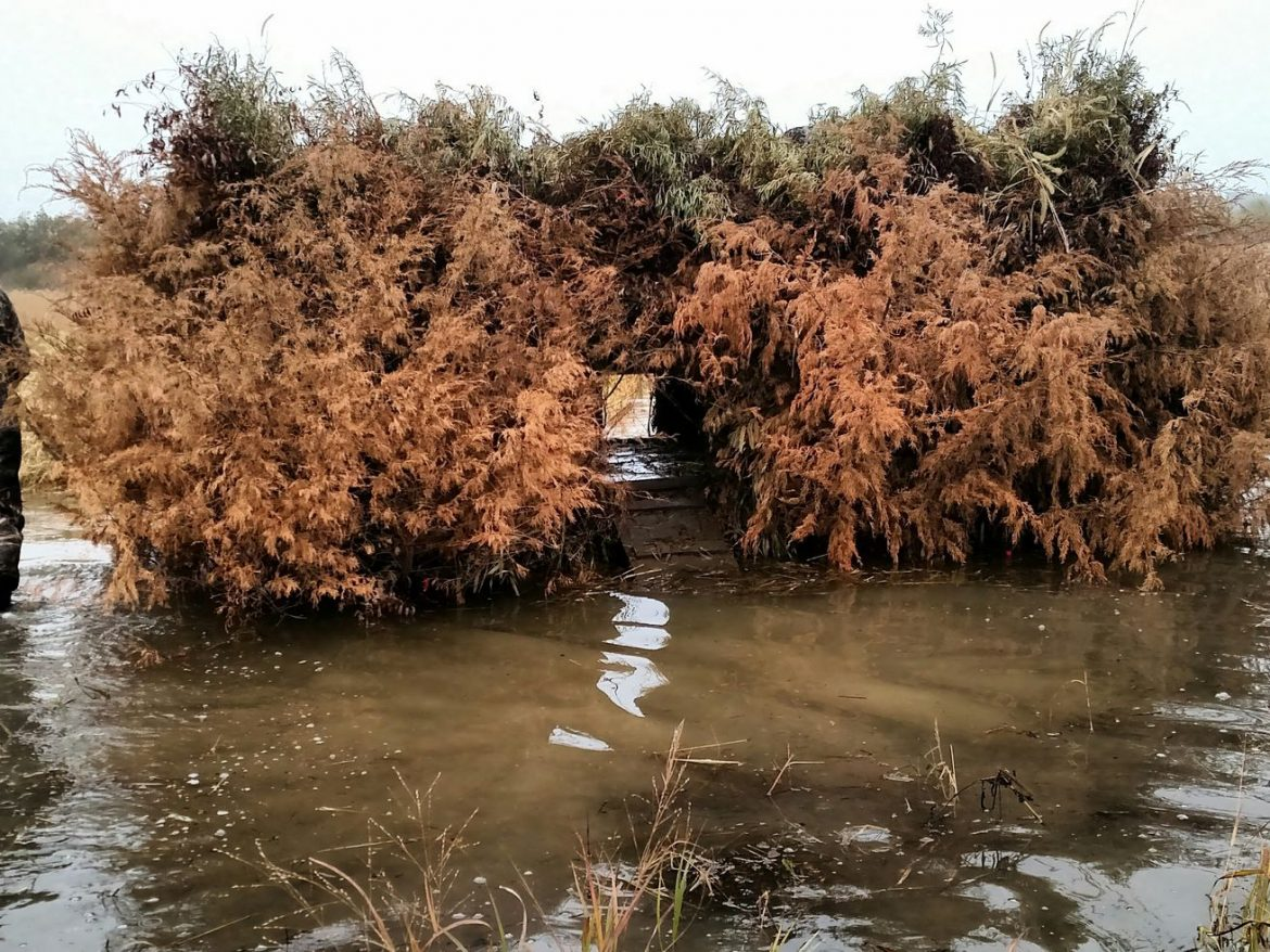 Waterfowl blind draws get a new look in Illinois: Pandemic procedures will make 2020-21 season unique