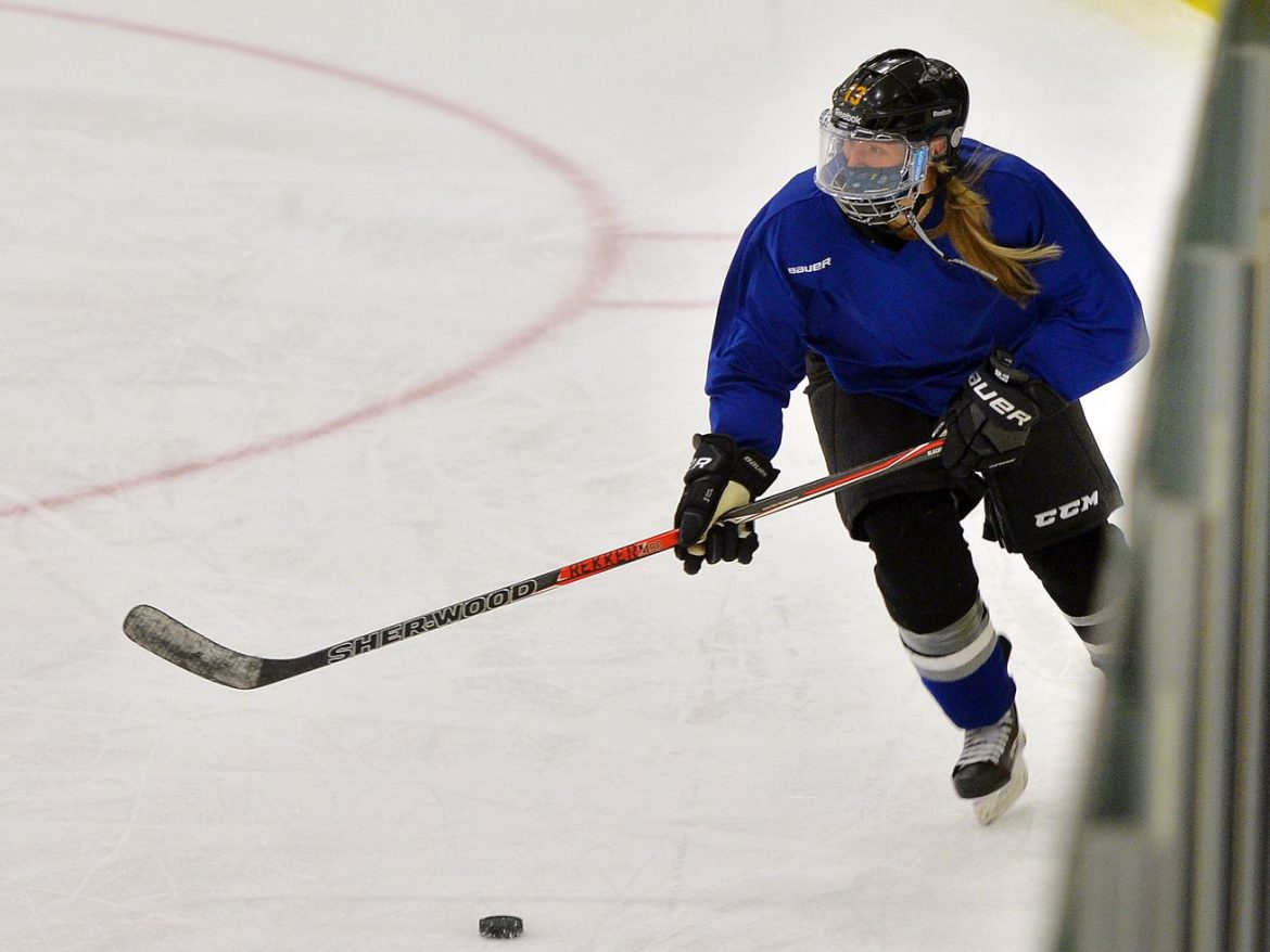 Elite women's hockey team looks to go pro, but will take on men in a Chicago adult league first