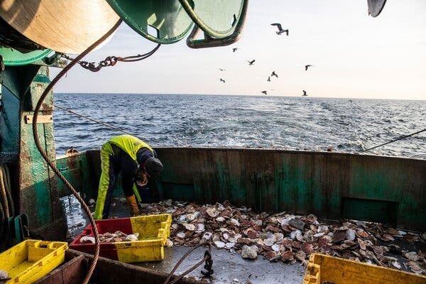 The Issue That Might Sink the Brexit Trade Talks: Fishing