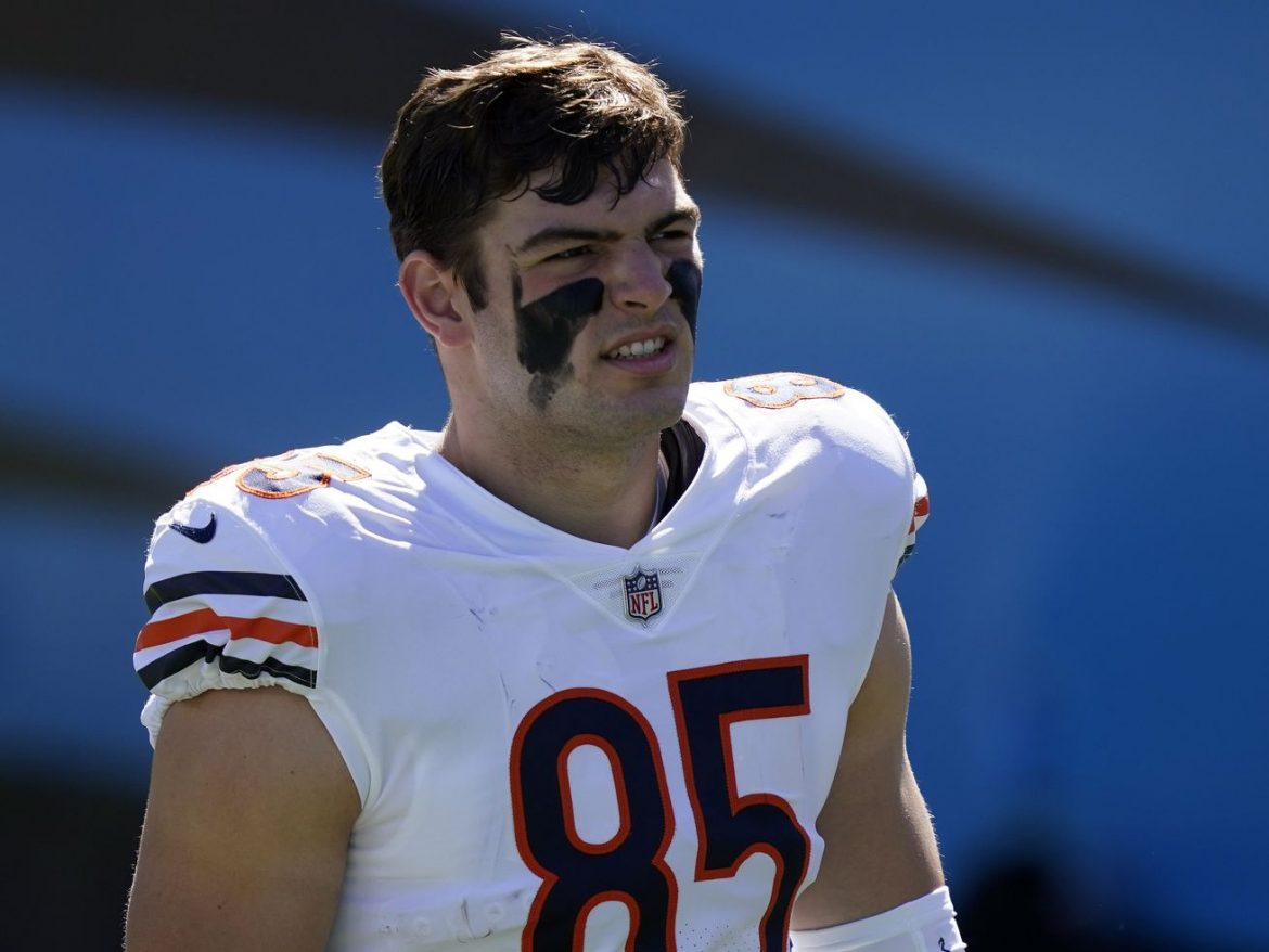 Bears TE Cole Kmet catches first career TD