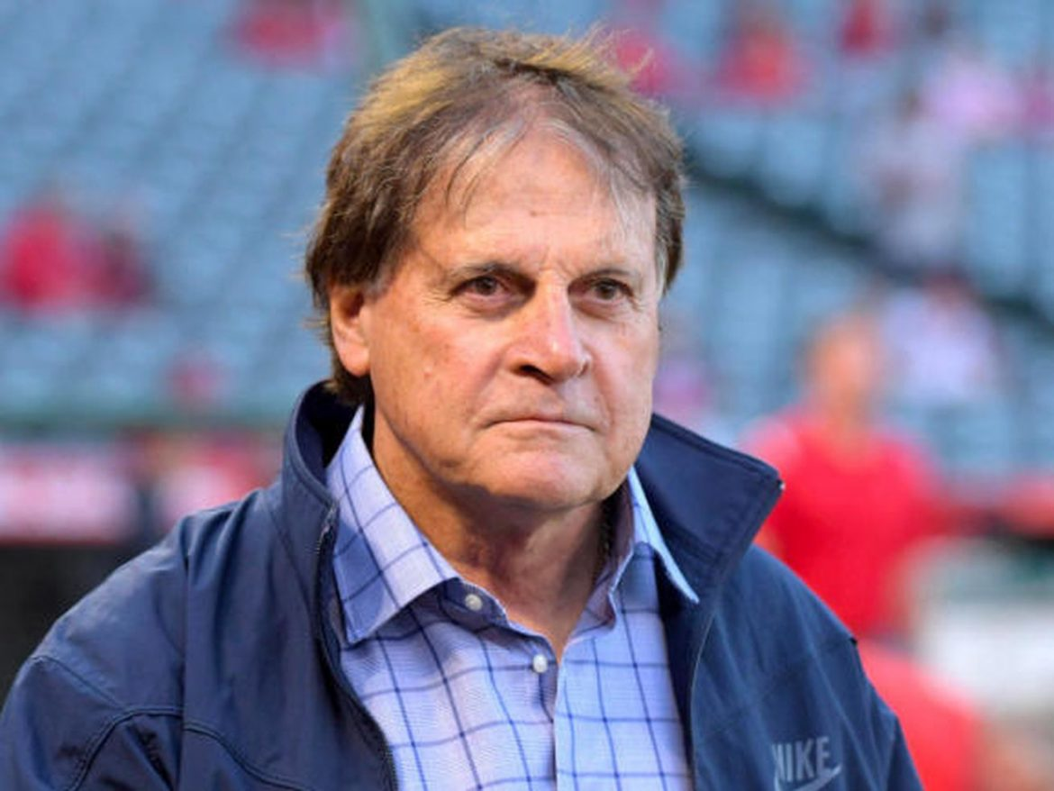 The White Sox and Tony La Russa — this is somebody's idea of a joke, right?