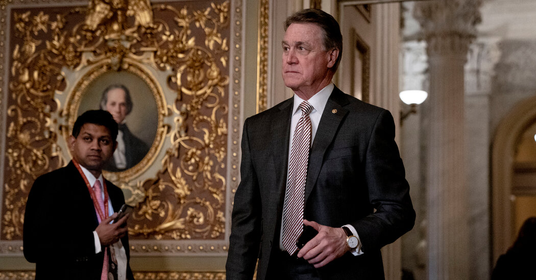 David Perdue profited from a Navy contractor's stock while overseeing the Naval fleet.