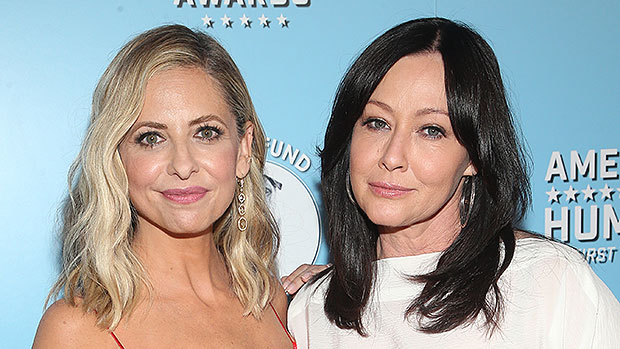 Shannen Doherty & Sarah Michelle Gellar Sumo Wrestle In Blow Up Balls & It May Be The Best Video Ever
