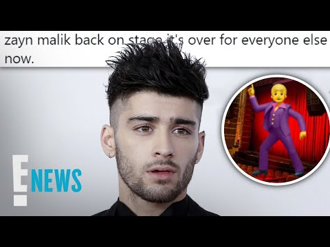 Why Zayn Malik Fans Are Freaking Out Over Pic   E! News
