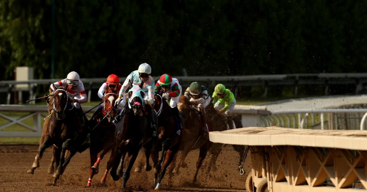 Horse dies during race at Santa Anita; jockey Desormeaux  transported to the hospital