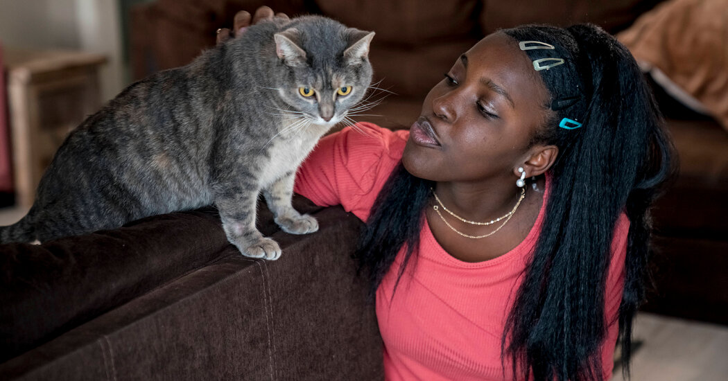 When Evictions Loom, Pets Are Also at Risk