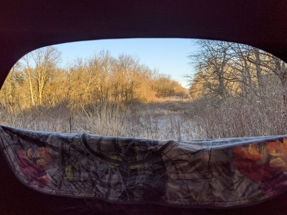 Illinois deer hunting: A belated update before the seasons end