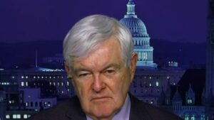 Gingrich: Dems 'methodically trying to destroy conservatism' with Biden as 'pleasant cover'