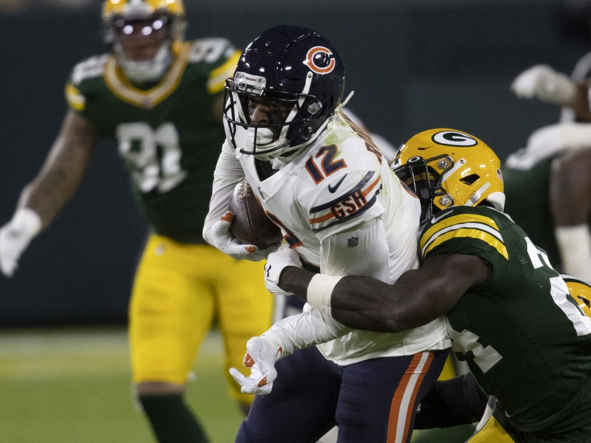 Bears WR Allen Robinson closes 1,250-yard season with quiet game vs. Packers