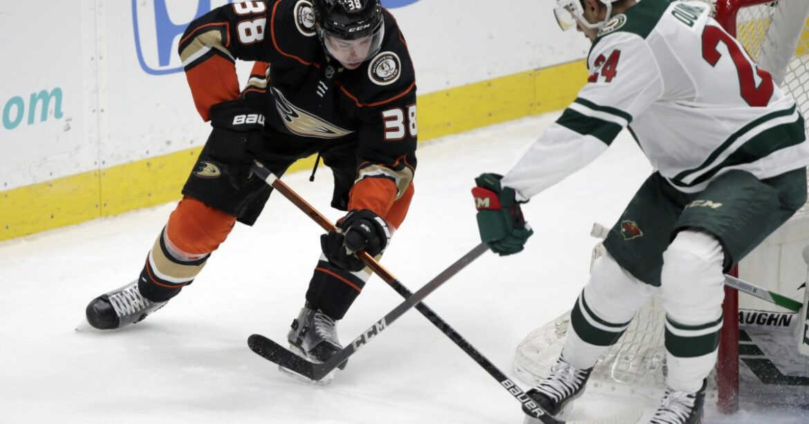 Ducks fall short against Wild