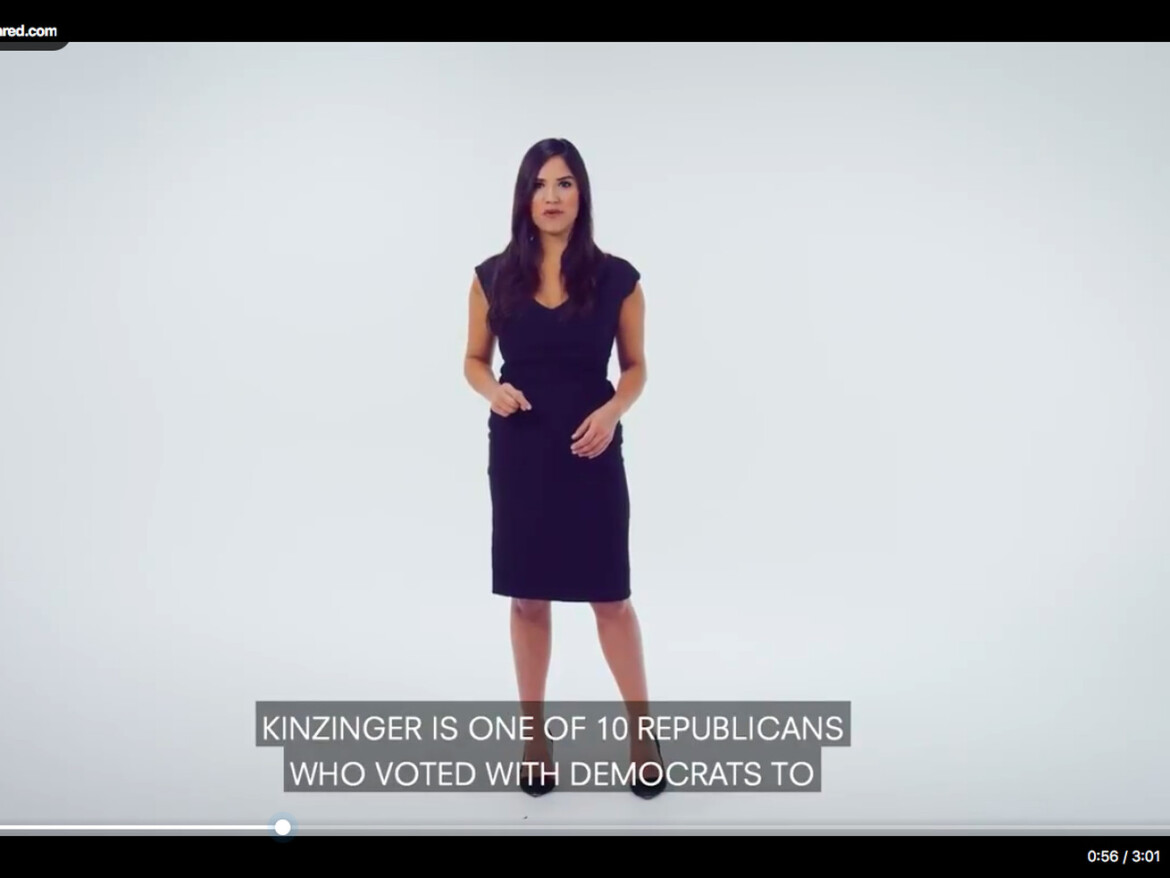Rep. Adam Kinzinger GOP primary challenger Catalina Lauf gets 523,900 hits on announcement video