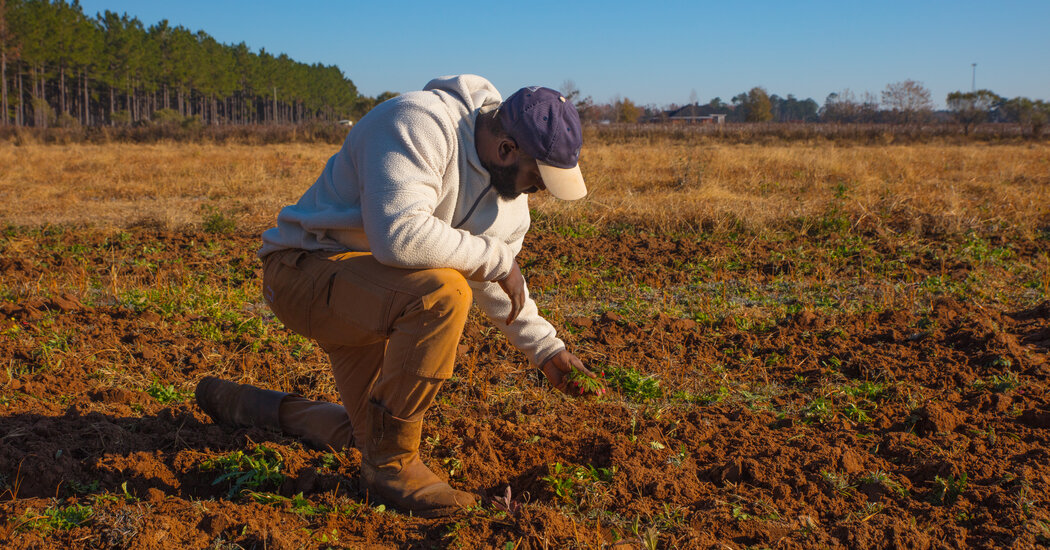 Biden Administration Ramps Up Debt Relief Program to Help Black Farmers
