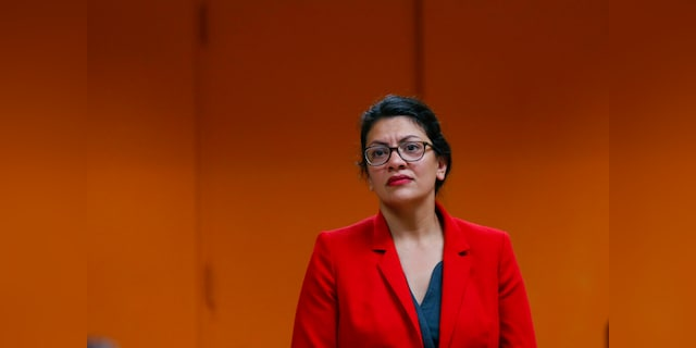 Tlaib bill would give everyone $2G a month during pandemic, including illegal immigrants