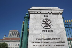 WTO to hold ministerial meeting in Geneva in late 2021: sources