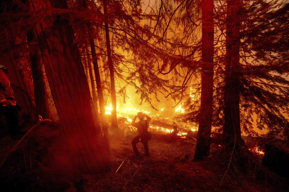 California plans $536M for forests before wildfire season