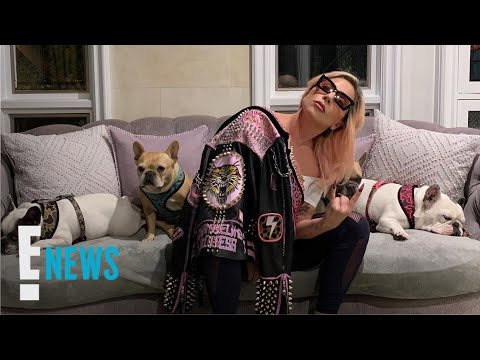 Lady Gaga's Dognappers Have Been Arrested   E! News