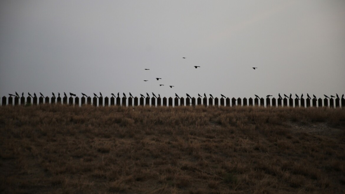 Pentagon cancels Trump-era border wall construction paid for by military funds