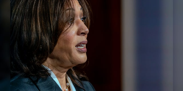 White House insists VP Harris' focus is 'not on the border' but on migration 'root causes'