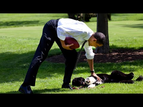 Michelle & Barack Obama Mourn the Loss of Their Dog Bo