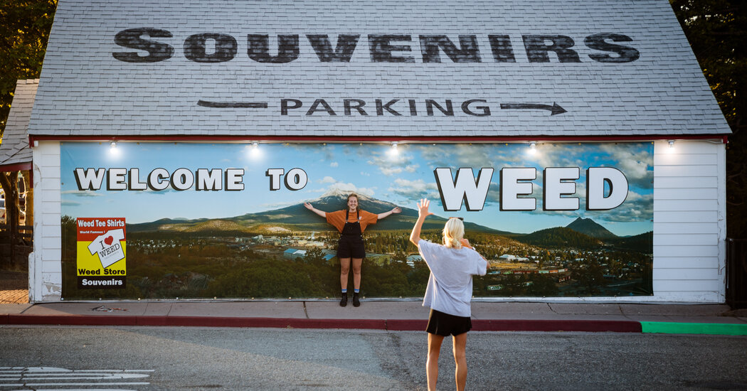 How Weed, Calif., Finally Embraced Weed, the Drug