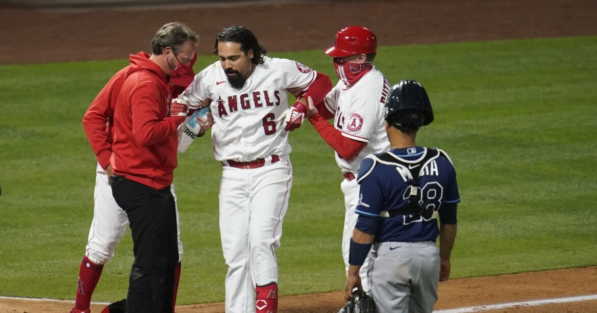 Angels place Anthony Rendon on injured list because of left knee bruise
