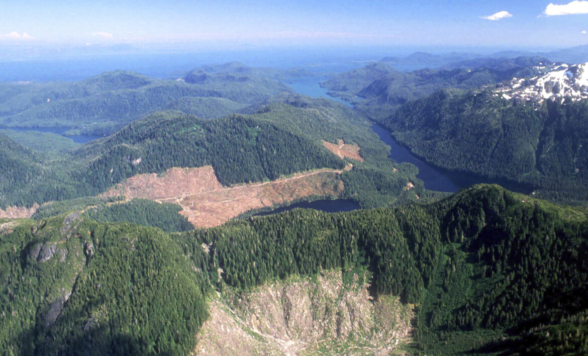 Biden Admin. to Restore Tongass National Forest Protections That Trump Revoked